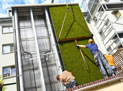 Green walls for fighting climate change